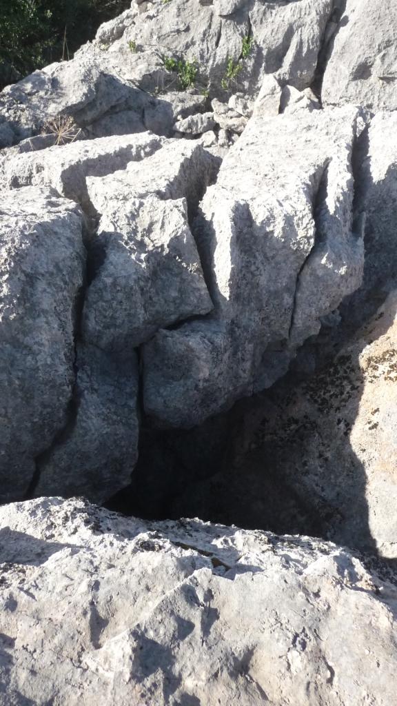 Rocha calcária VI